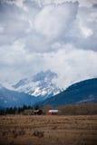 Fattoria in Alberta immagini stock libere da diritti