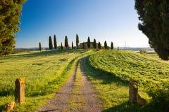 Fattoria con il cipresso ed i cieli blu, Pienza, Toscana, Italia fotografia stock libera da diritti