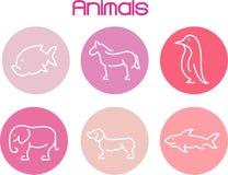 fattoria degli animali Fotografie Stock Libere da Diritti