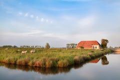 Fattoria e pecore sul pascolo dal fiume Immagini Stock Libere da Diritti