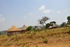 Fattoria Kenya ad ovest Fotografia Stock Libera da Diritti