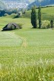 Fattoria nel Bernese Oberland Immagini Stock Libere da Diritti