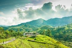 Fattoria nelle montagne fuori di Jerico Colombia Fotografia Stock