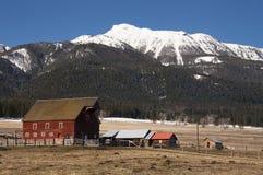 Fattoria rossa Sta unito occidentale del ranch della montagna dell'edificio attiguo del granaio Fotografia Stock Libera da Diritti