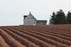 Fattoria rurale fotografia stock libera da diritti