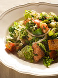 Fattoush Royalty Free Stock Photos