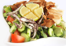 Fattoush - Libanese Salade Royalty-vrije Stock Afbeelding