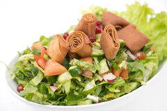 Fattoush Salad , Lebanese salad Royalty Free Stock Photos