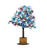 Fatture dell'euro dell'albero dei soldi Immagine Stock