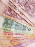 fatture messicane delle denominazioni differenti, il retro Fotografia Stock