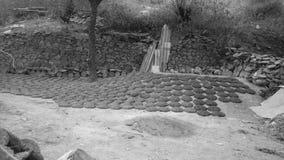 Fatura da argila do estrume foto de stock