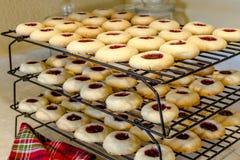 Fatura de cookies de Thumbprint da framboesa Foto de Stock
