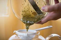 Fatura do grupo de chá da infusão do Camomila-estragão Imagem de Stock