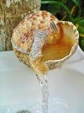 Faucet раковины раковины раковины в атолле Главера, Белизе стоковое изображение