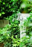 Faucet хрома Стоковое фото RF