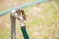 faucet Fotografia Royalty Free