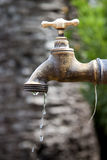 Faucet bronze Stock Image