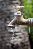 Faucet bronze Stock Image