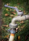 Faucet in a grass Royalty Free Stock Photo