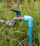 Faucet on the grass of green Royalty Free Stock Images