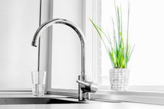 Faucet with a green plant Stock Images
