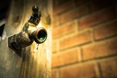Faucet Sprintime в garden3 стоковая фотография rf