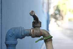 Faucet. Tap water for watering house plants Stock Photo