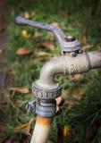 Faucet w trawie Zdjęcie Royalty Free