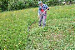 Fauchage de l'herbe de la manière traditionnelle de village avec la faux Photos stock