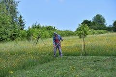 Fauchage de l'herbe de la manière traditionnelle de village avec la faux Image stock
