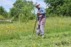 Fauchage de l'herbe de la manière traditionnelle de village avec la faux Images libres de droits
