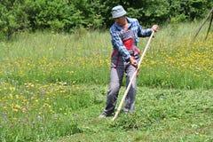 Fauchage de l'herbe de la manière traditionnelle de village avec la faux Photographie stock