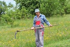 Fauchage de l'herbe de la manière traditionnelle de village avec la faux Photos libres de droits