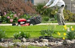 Fauchage de la pelouse un jour de source Images stock