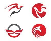 Faucon Eagle Bird Logo Template Photographie stock