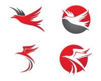 Faucon Eagle Bird Logo Template Images stock