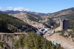 Faucon noir le Colorado Image libre de droits