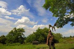 Fauconnier avec le cherrug de falco de faucon. Photographie stock libre de droits