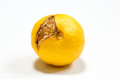 Faule Zitrone lokalisiert auf Weiß stockfotos