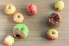 Fauler Apfel und frischer Apfel Stockbild