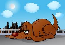 Fauler Hund Stockbild