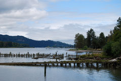 Fauler Pier Pilings auf Columbia River Oregon-Washington Grenze lizenzfreie stockbilder