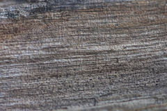 Faules Holz Lizenzfreie Stockbilder