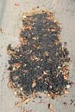 Faulty road repair. In Romania - fixed asphalt patch with dirt and leaves. Inept and ineffectual road work Stock Photos