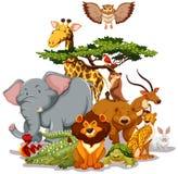 fauna libre illustration