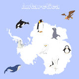 Fauna of Antarctica. Set of cartoon polar animals for babies and Stock Image