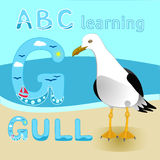 Fauna atada curto da praia do mar do albatroz do vetor da gaivota do personagem de banda desenhada do pássaro da gaivota grande p Foto de Stock Royalty Free