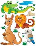 A fauna australiana dos animais selvagens ajustou 2 Foto de Stock