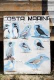 Fauna at the Chiloe Archipelago Stock Photography