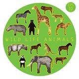Fauna Doodle Set Royalty Free Stock Images